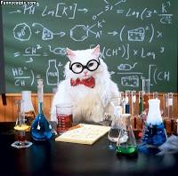 Professor_Cat
