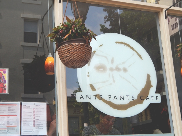 Katelyn Elisabeth - Ants Pants Cafe